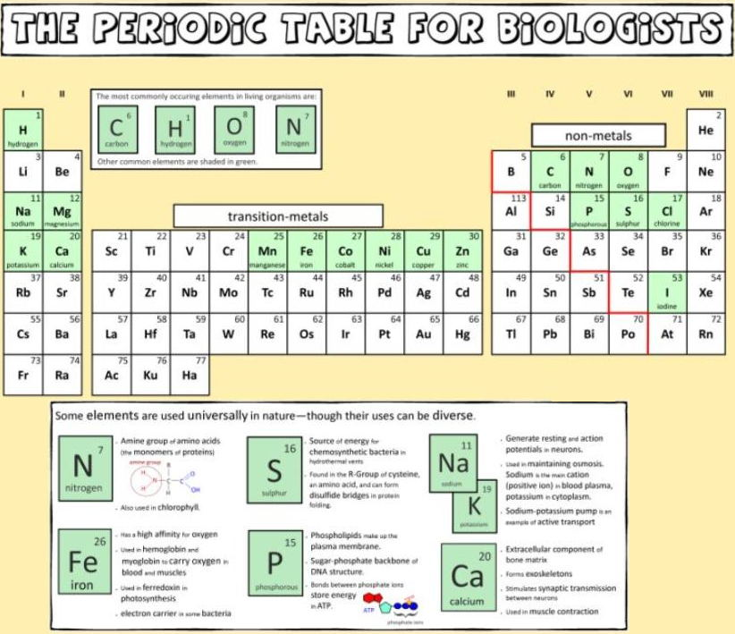 Periodic table database chemogenesis an error occurred urtaz