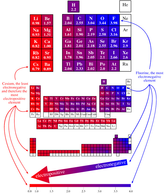 Periodic table database chemogenesis blue elements are electronegative red elements are electropositive and purple elements are intermediate notice how hydrogen is intermediate in urtaz Choice Image