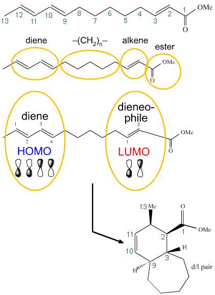 Pericyclic   Reaction Chemistry   Chemogenesis