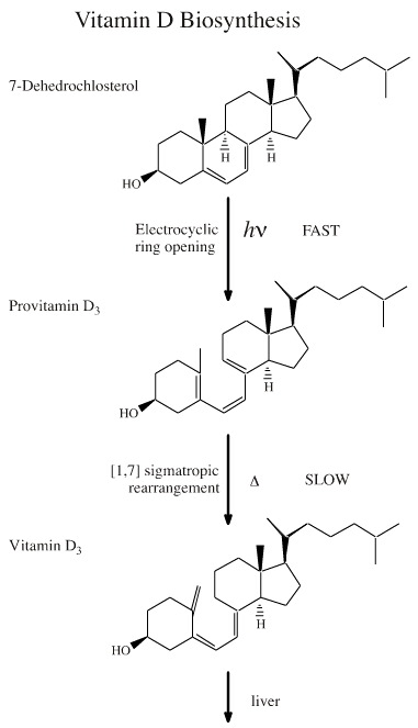 secosteroid steroid